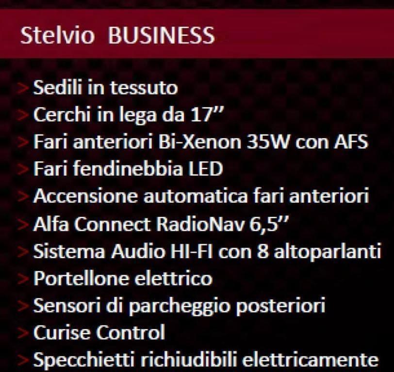 Alfa Romeo Stelvio Business