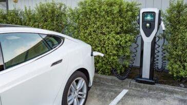 Auto elettriche svalutazione