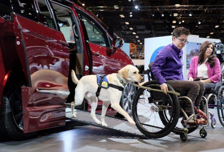 NHTSA modifiche mobilità persone disabili