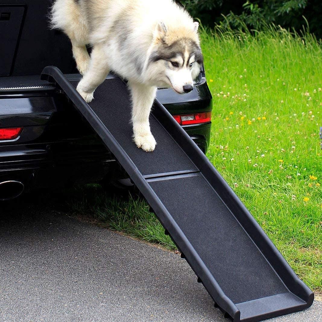 Rampa per far salire cane in auto